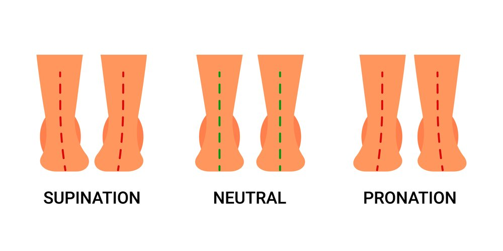 Supination, neutral and pronation foot positions