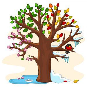 A cartoon of a tree illustrating the various seasons
