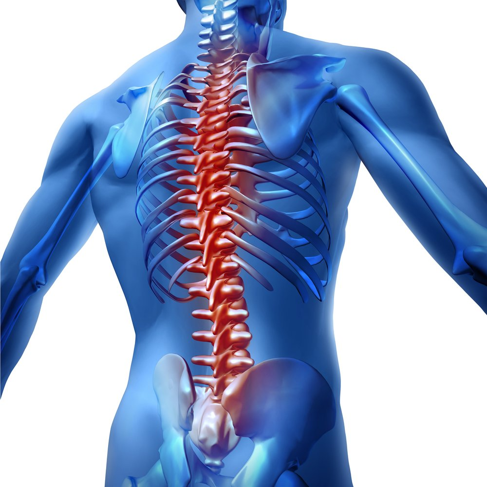 graphic image of back and spine pain for osteopathic treatment