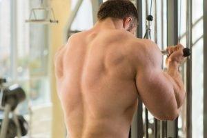 A muscular man's back. He is doing an upper body workout.